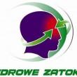 zz-logotyp3