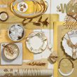 Claires_lookbook_SS15_WHITEGOLD1
